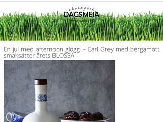 dagsmeja.se