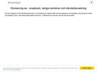 domaining.se