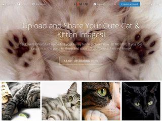 Preview of i-love-cats.com