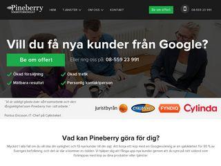 Earlier screenshot of pineberry.com