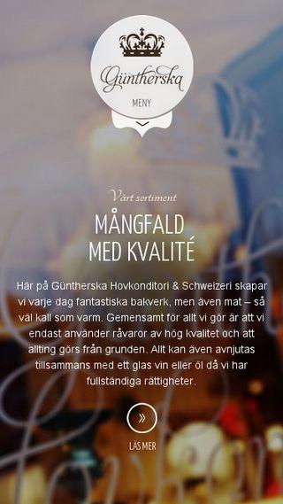 Mobile preview of guntherska.se